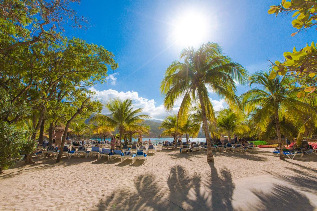 ハイチの砂浜と椰子の木